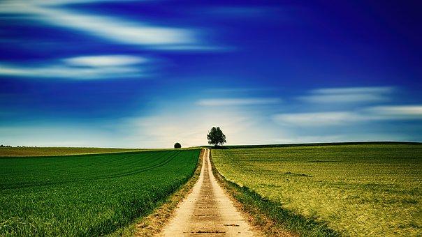 chemin de la colline